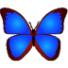 bkViewer(照片浏览器)V4.9.9.0最新官方版