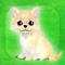 My Dog Life ios版(苹果ios My Dog Life下载)V1.01官方版