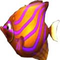 大鱼吃小鱼安卓版(手机安卓大鱼吃小鱼下载)V11.8官方版
