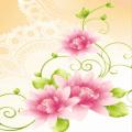 Flowers HD LWP手机版(手机Flowers HD LWP安卓版下载)V1.1官方版
